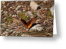 Bug Art114 Greeting Card