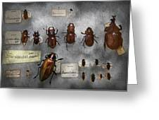 Bug Collector - The Insect Collection  Greeting Card by Mike Savad