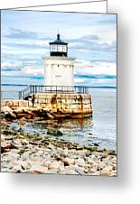 Bug Light Study Greeting Card