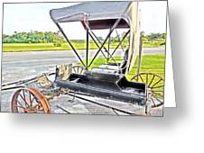 Buggy By The Road Greeting Card