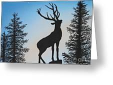 Bugle At Dawn Greeting Card