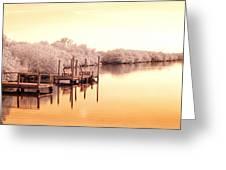 Bull Frog Creek Gibsonton Fl Usa Near Infrared Greeting Card
