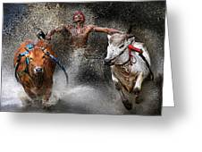 Bull Race Greeting Card by Wei Seng Chen