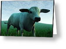Bull... Greeting Card