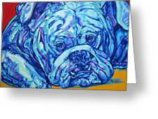 Bulldog Blues Greeting Card