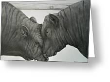 Bullheaded Greeting Card by Adrienne Giljam
