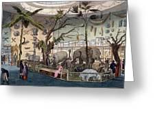 Bullocks Museum, 22 Piccadilly, London Greeting Card