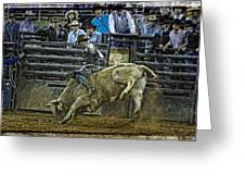 Bullriding Mania Greeting Card