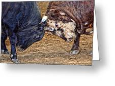 Bulls Greeting Card by Karen Walzer
