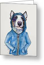 Bully For The Hoodie Greeting Card