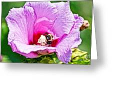 Bumble Bee Iv Greeting Card