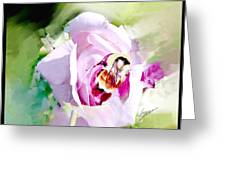 Bumble Bee On Rose Greeting Card