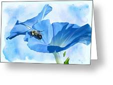 Bumblebee And Blue Morning Glory Greeting Card