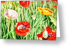 Bunch Of Poppies II Greeting Card