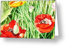 Bunch Of Poppies IIi Greeting Card