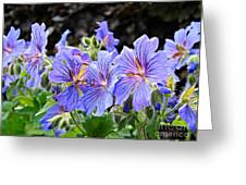 Bunches Greeting Card