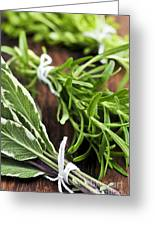 Bunches Of Fresh Herbs Greeting Card
