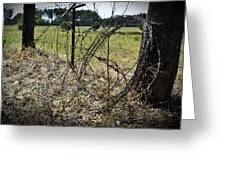 Bundled Barbed Wire Greeting Card