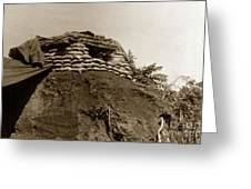 Bunker Above The Dak Poko River Near Dak To Kontum Province Vietnam 1968 Greeting Card
