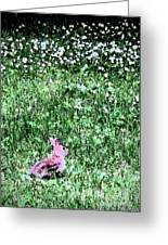 Bunny Rabbit Digital Paint Greeting Card