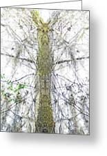 Burden Center Spirit Tree Greeting Card