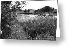 Burford Lake Greeting Card