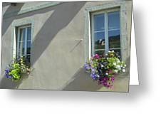 Flower Baskets Greeting Card