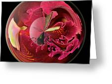 Burgundy Orchids In A Glass Globe Greeting Card