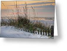 Buried Fence And Sea Oats Sunrise Greeting Card