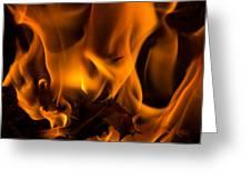 Burning Holly Greeting Card