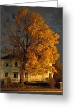 Burning Leaves At Night Greeting Card