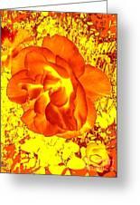 Burning Passion Greeting Card