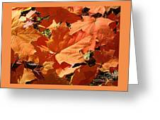 Burnt Orange Greeting Card