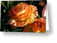 Burnt Rose Greeting Card