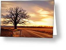 Burr Oak Silhouette Greeting Card