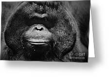 Burrued Face Greeting Card
