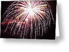 4th Of July Fireworks 9 Greeting Card