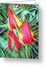 Burst Of Color Greeting Card by Cathie Tyler