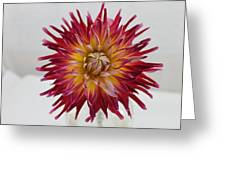 Burst Of Fire Greeting Card