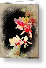 Bursting Magnolias Greeting Card