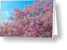 Bursting With Blossoms With A Hint Of Green Greeting Card