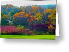 Bursting With Color 1 Greeting Card