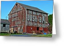 Bush And Bull Roadside Barn Greeting Card
