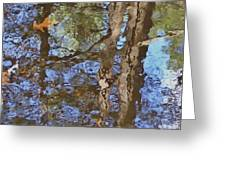 Reflection In Bushkill Falls  Greeting Card