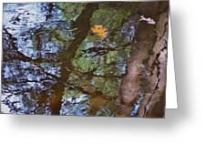 Second  Reflection In Bushkill Falls  Greeting Card