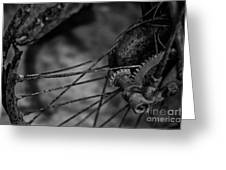 Busted Rusted Villiers Motorcycle Wheel Greeting Card