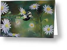 Busy Bee - Nature Scene Greeting Card by Prashant Shah