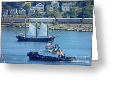 Busy Harbor Greeting Card