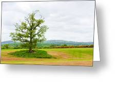 But Only God Can Make A Tree Greeting Card by Semmick Photo