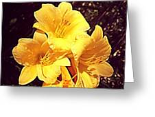 Butter Yellow Lilly Cluster Greeting Card